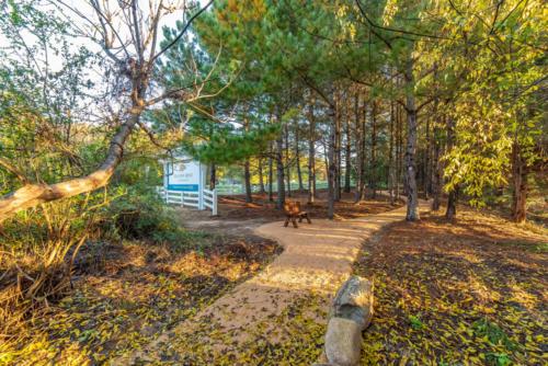Galloway Ridge Walking Trail North Carolina Trail Builder