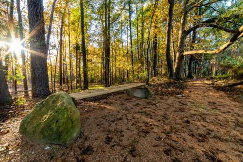 NC Trail Bench