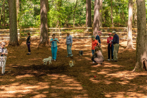 Pittsboro NC Dog Park North Carolina Trail Builder