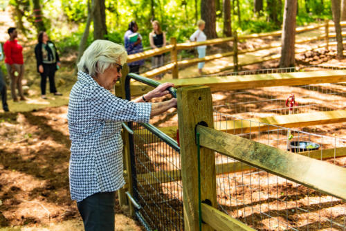 Dog Park Leash Area Entrance North Carolina Trail Builder