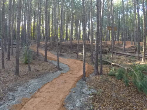 Single-Track to Pump Track