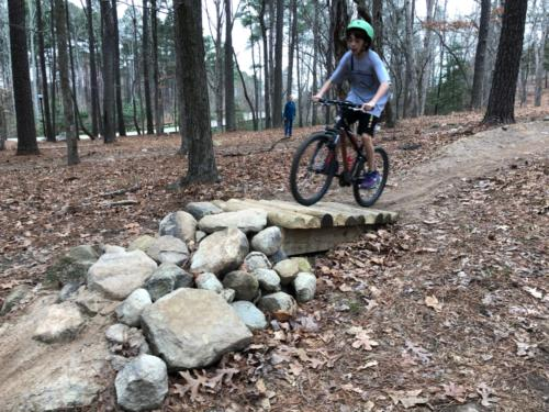 Beginner Bike Park Obstacle