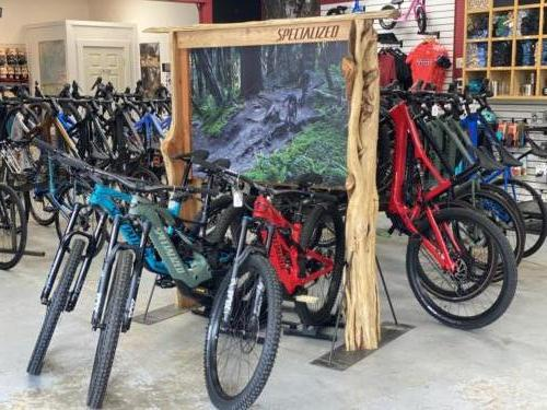 Specialized Bike Display