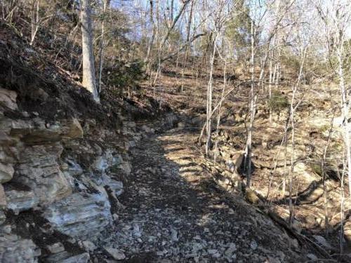 North Carolina ATV Trail