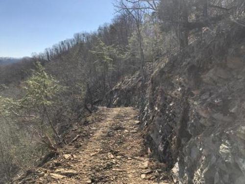 Brevard Trail