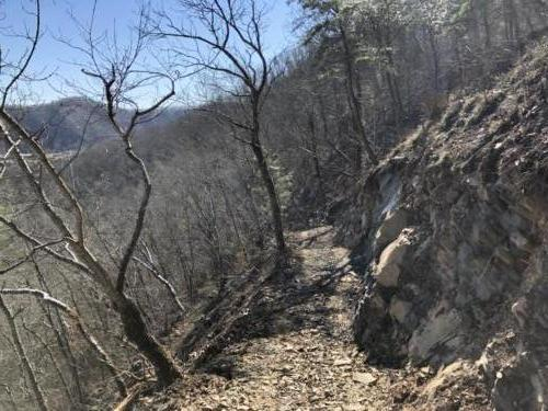 South Carolina ATV Trail
