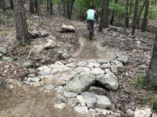 Trail Rock Armoring