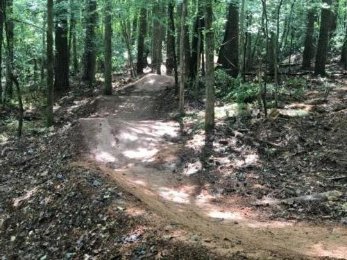 Bike Trail Construction