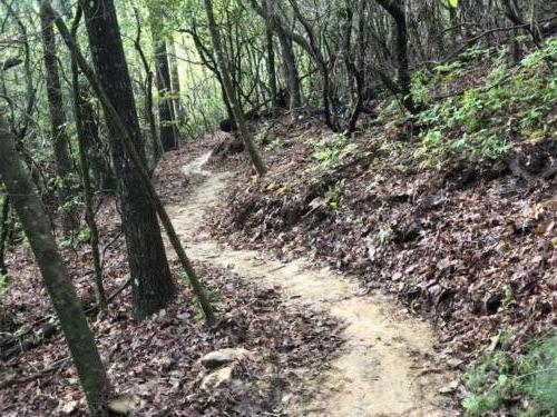 Hand Built Trail