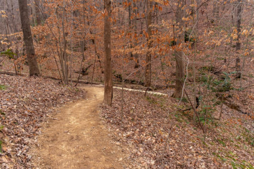 Finished Walking Trail North Carolina Trail Builder
