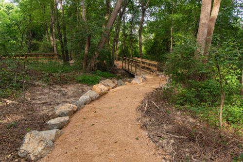 DG Trail